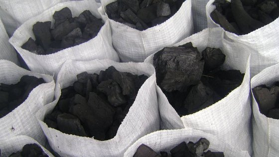 Photo of Charcoal Business Booms in Ondo State as Kerosene, Cooking Gas Price Hike Lingers