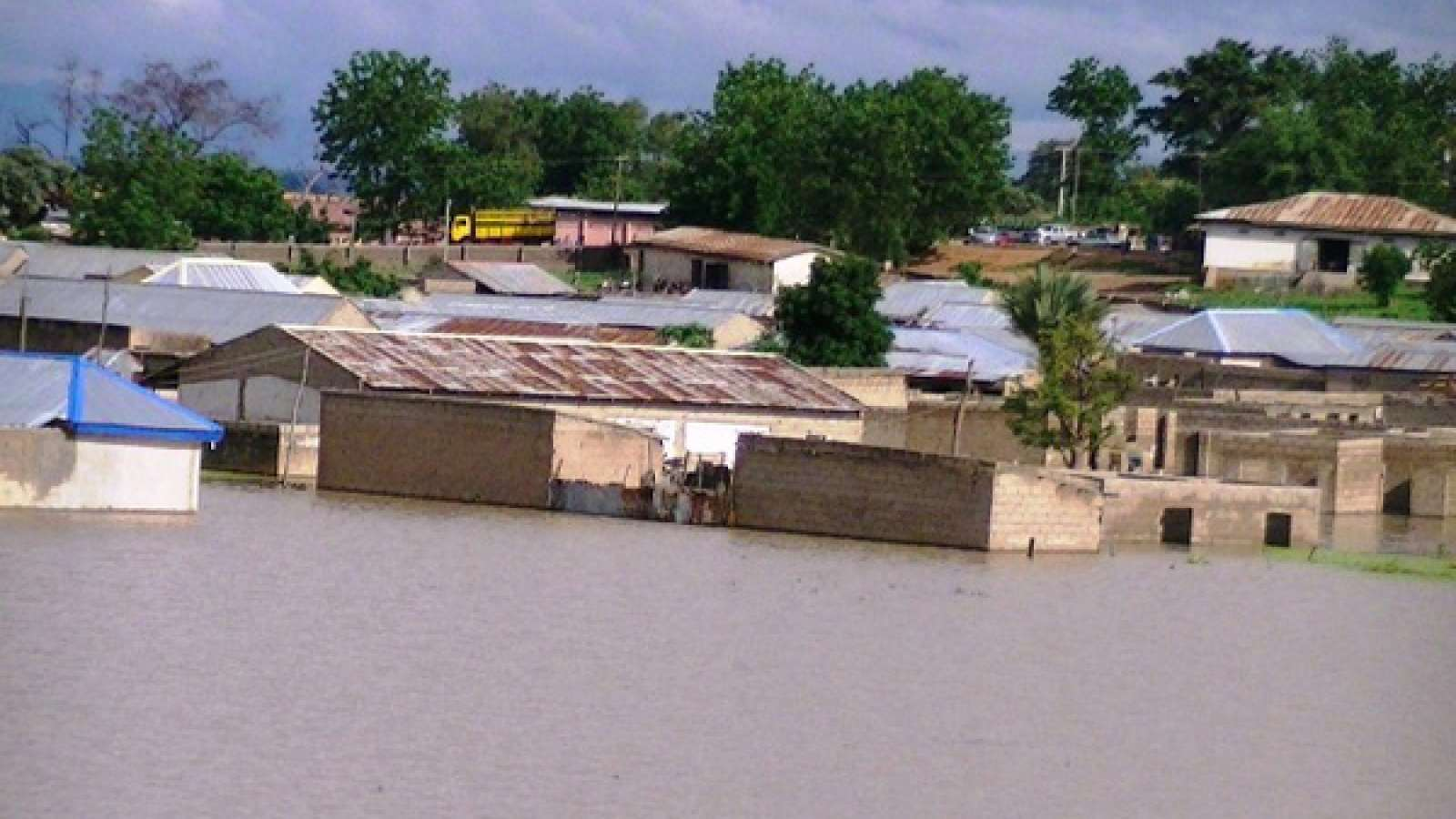 Photo of Rainstorm Kill 1, Destroy Several Houses in Kano