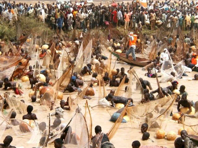 Photo of Argungu Fishing Festival Set to Hold March 2018 – Emir