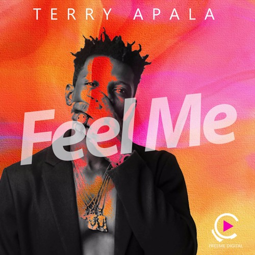 artworks 000224946103 dy082y t500x500 - DOWNLOAD: Terry Apala – 'Feel Me' | MUSIC