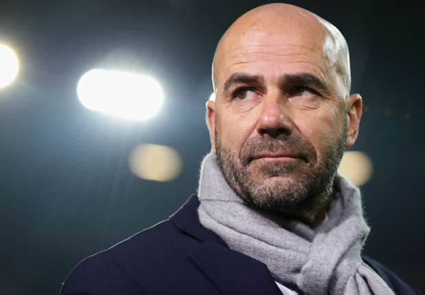 Photo of Peter Bosz Named New Coach of Borussia Dortmund
