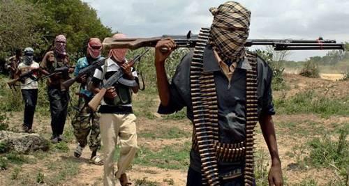 Nigeria Boko Haram2 - Boko Haram Terrorists Kill 2 Farm Workers in Borno