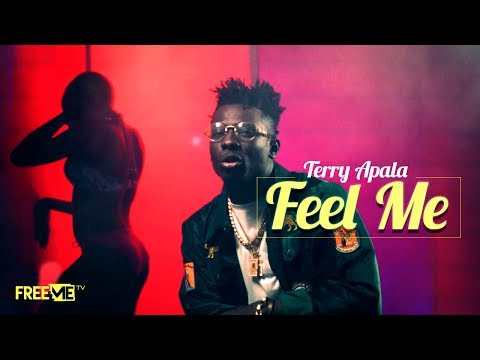 hqdefault 3 - DOWNLOAD: Terry Apala – 'Feel Me' | VIDEO