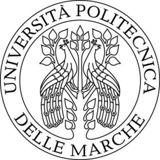 Photo of Scholarships: Marche Polytechnic University, Italy scholarship program for 2017