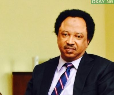 Photo of Why I Revealed Lawmakers' Salaries – Senator Shehu Sani
