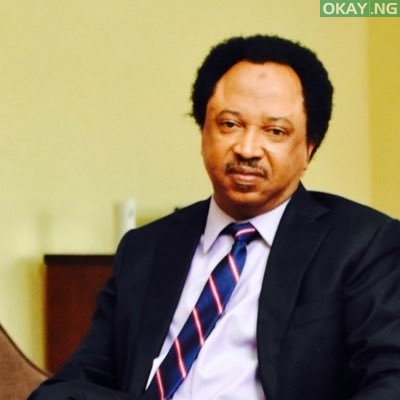 Photo of Sen. Shehu Sani Calls On President Buhari to Include Cabal, APC Members In Looters List