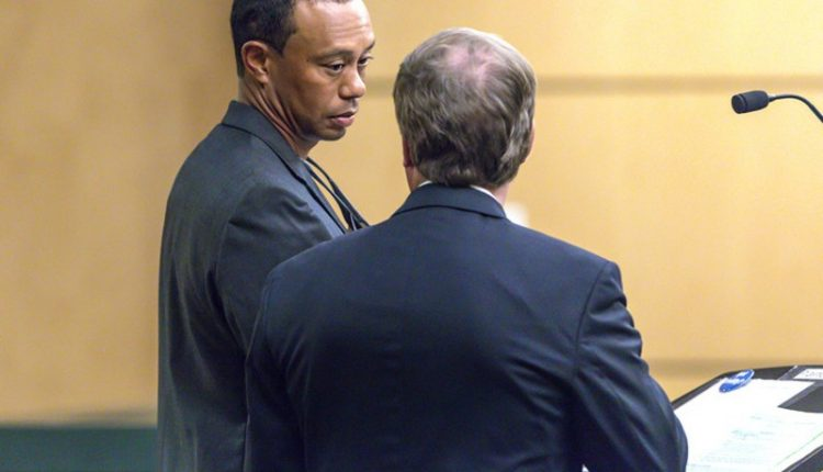 Tiger Woods In Court
