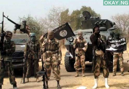 Photo of Boko Haram terrorists kill humanitarian aid worker in Borno
