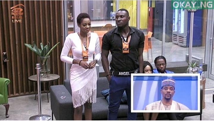 Photo of #BBNaija: Ahneeka, Angel Evicted From Big Brother Naija House