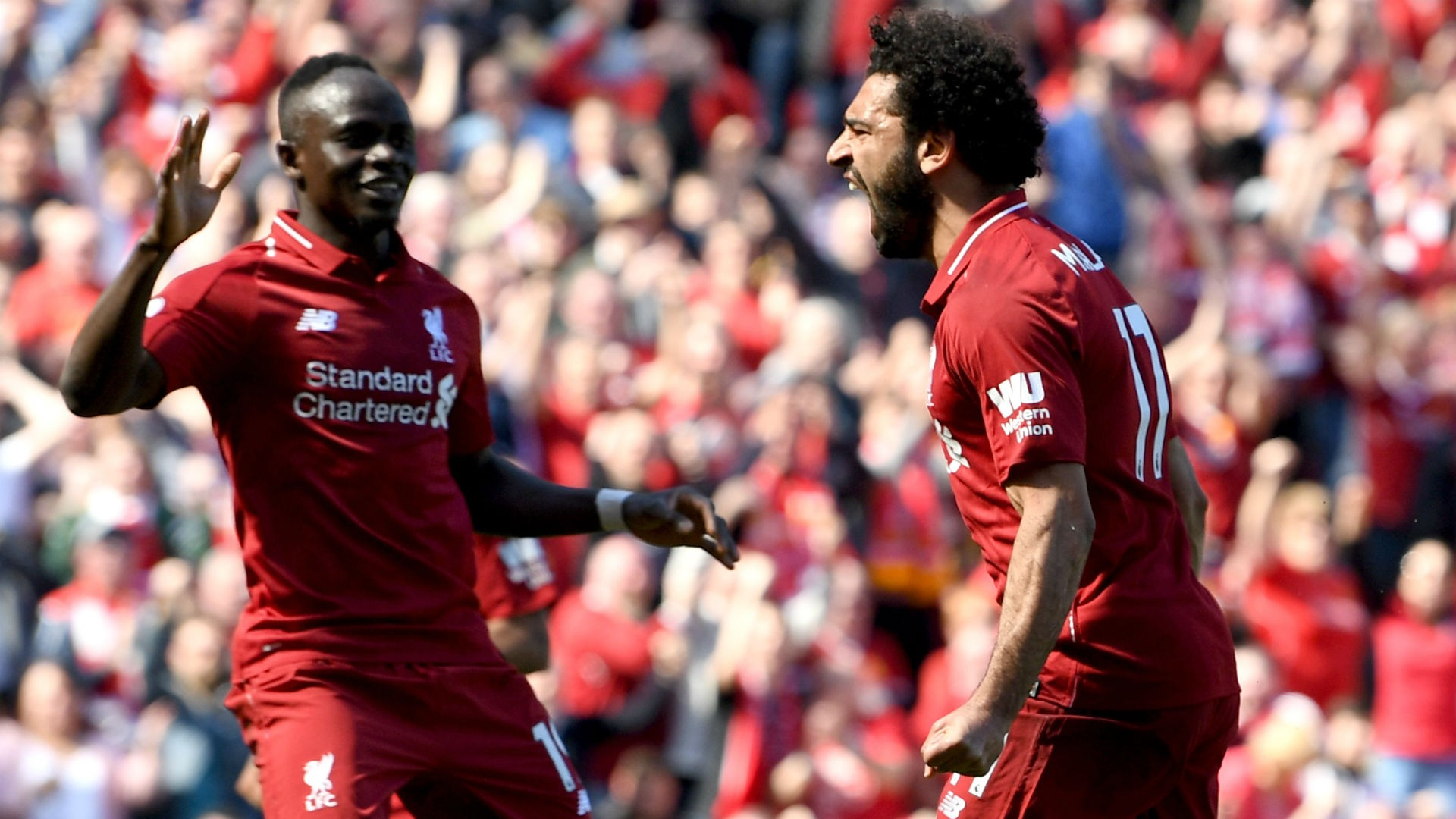 Liverpool 4-0 Brighton and Hove Albion (Premier League) Highlights