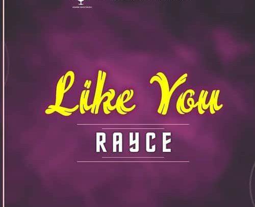 Photo of MUSIC: Rayce – Like You
