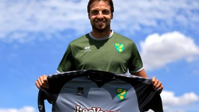 Di484OxXcAETWXB 390x220 - Transfer News: Norwich City sign ex-Brighton and Newcastle goalkeeper Tim Krul