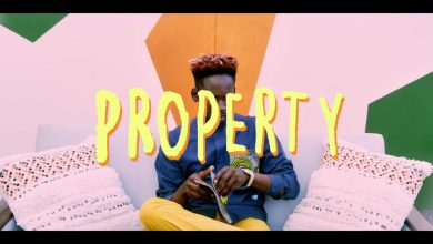 Mr Eazi Property Video