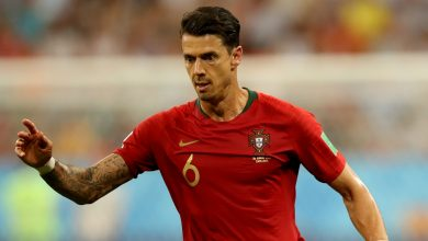 a 390x220 - Transfer News: Lille sign Portuguese defender Jose Fonte