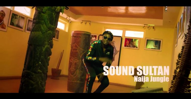 Photo of VIDEO: Sound Sultan – Naija Jungle