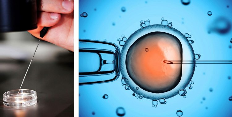 Woman Shocks Husband, Swaps His Sperm for her Lover's During IVF - OkayNG News