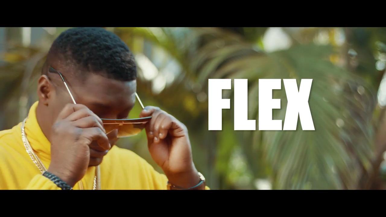 CDQ – Flex Video