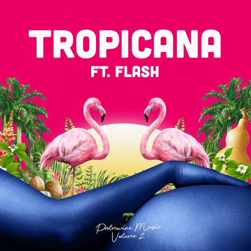 Show Dem Camp – Tropicana ft. Flash