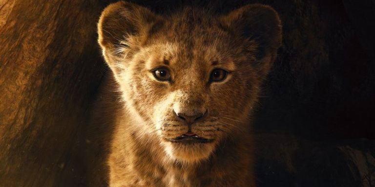 Photo of The Lion King 2019 First Official Trailer Released [Watch]