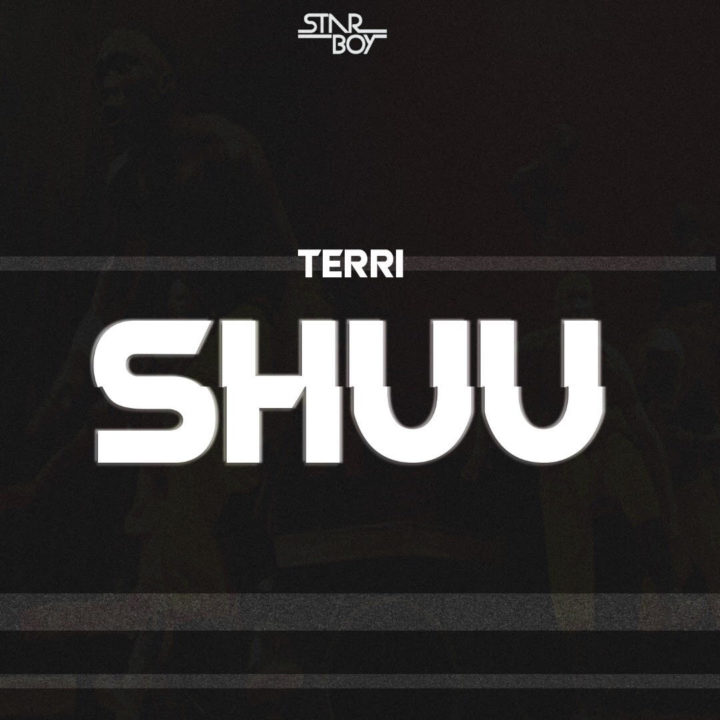 "Photo of StarBoy's Terri Surfaces with New Song ""Shuu"" [Listen]"