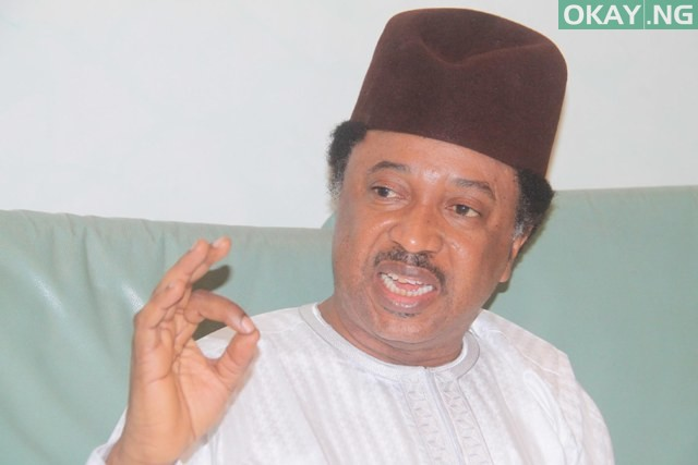 Photo of 'Stop involving yourself in elections', Shehu Sani to lecturers