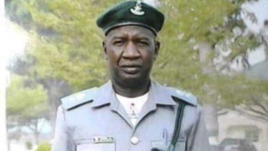 Customs bee dies Okay ng 390x220 - Nigeria Customs officer dies after being stung by swarm of bees