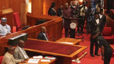IGP Adamu Senate Okay ng 390x220 - IGP Adamu honours senate's invitation over raising security challenges
