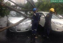 Lagos tree fall Okay ng 1 220x150 - Heavy morning rainfall causes flood, uproots trees in Lagos [Photos]