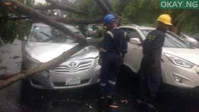 Lagos tree fall Okay ng 1 390x220 - Heavy morning rainfall causes flood, uproots trees in Lagos [Photos]