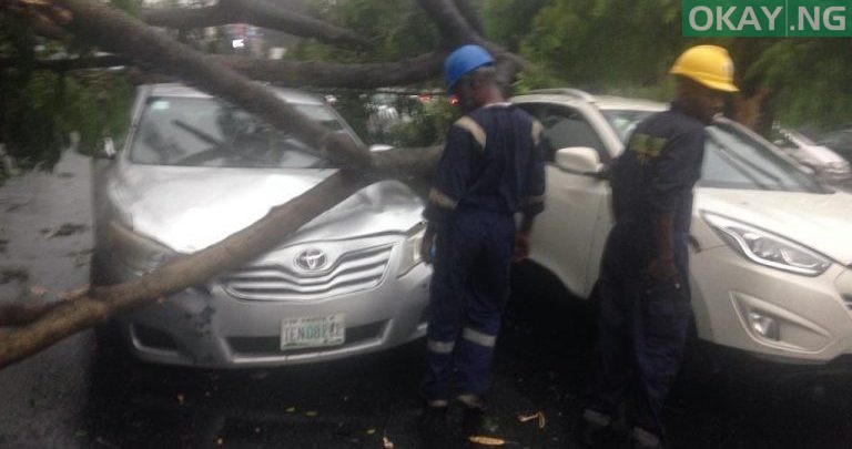 Photo of Heavy morning rainfall causes flood, uproots trees in Lagos [Photos]
