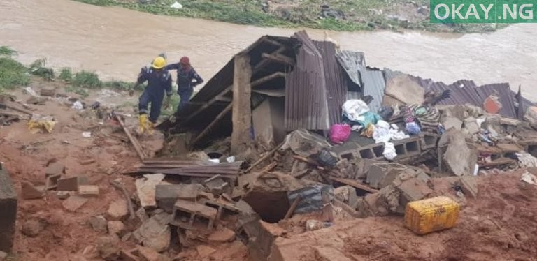 Lagos tree fall Okay ng 7 - Heavy morning rainfall causes flood, uproots trees in Lagos [Photos]