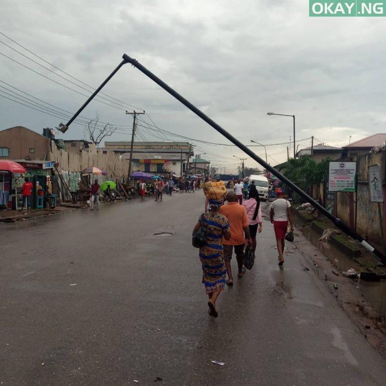 Lagos tree fall Okay ng 8 - Heavy morning rainfall causes flood, uproots trees in Lagos [Photos]