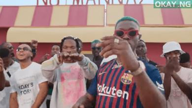 NairaMarley x Zlatan Am I A YahooBoy Okay ng min 390x220 - Naira Marley premieres video for 'Am I a Yahoo Boy' with Zlatan | WATCH