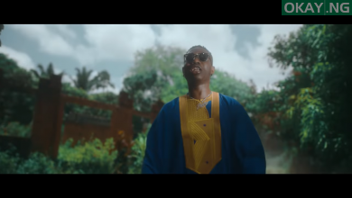 'This Year' video by Zlatan
