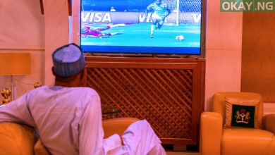 Buhari AFCON Nigeria Burundi Okay ng 1 390x220 - AFCON: Photos of Buhari watching Super Eagles' match against Burundi