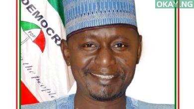 Gamawa Babayo Garba 390x220 - Senator Babayo Gamawa, former PDP deputy chairman, dies after brief illness