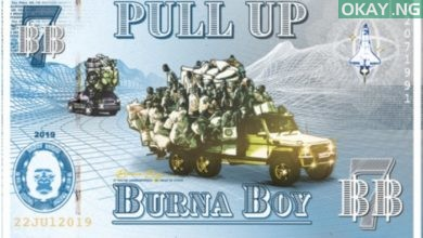 Pull Up by Burna Boy