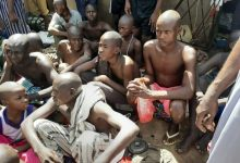 Photo of In Daura: Police rescue over 300 chained persons from 'torture centre' (Pictures)