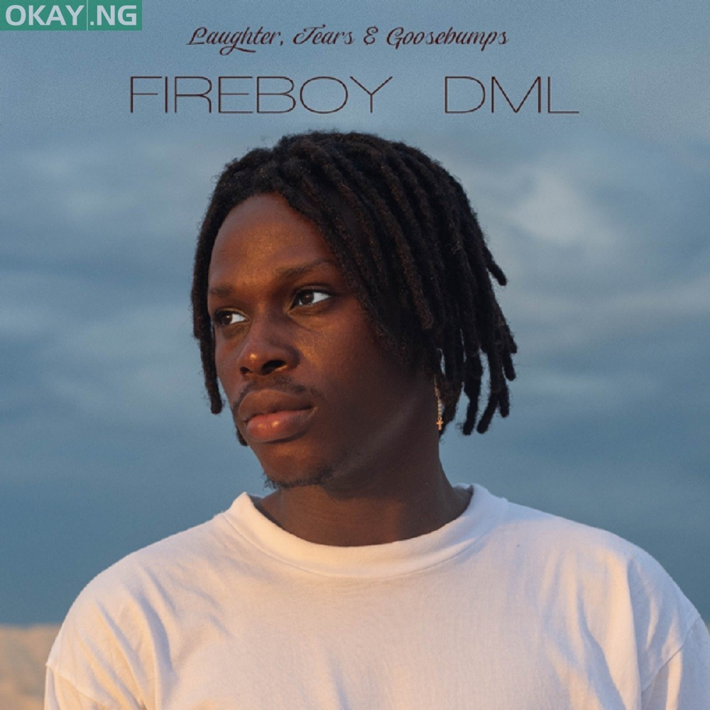 Laughter, Tears & Goosebumps by Fireboy DML