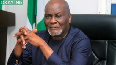 Photo of Buhari suspends Amnesty Programme boss, Charles Dokubo
