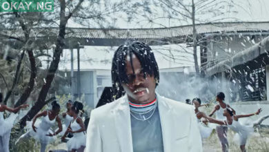 Photo of Fireboy DML drops video for 'Vibration'