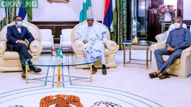 Photo of Buhari vows to stand behind Adesina to get re-elected as AfDB President