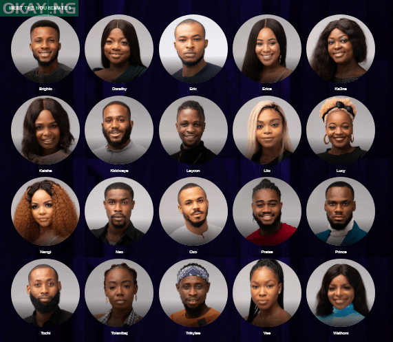 Photo of BBNaija 2020: Breakdown of how viewers voted in Week 9