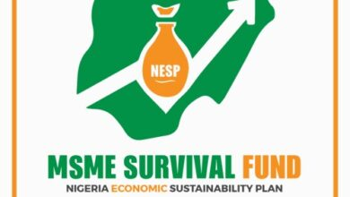 Photo of FG to open registration portal for N75bn MSME survival fund Monday